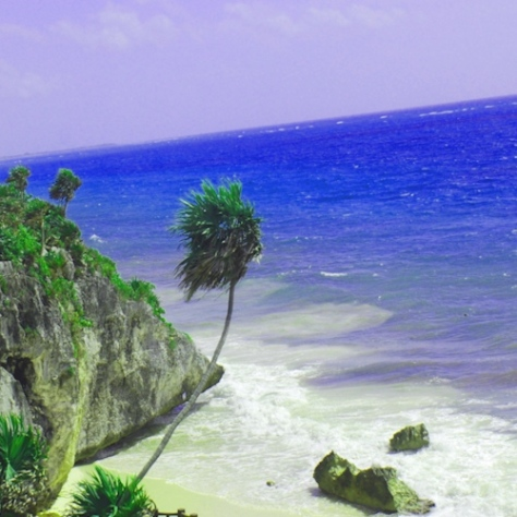 caribbb