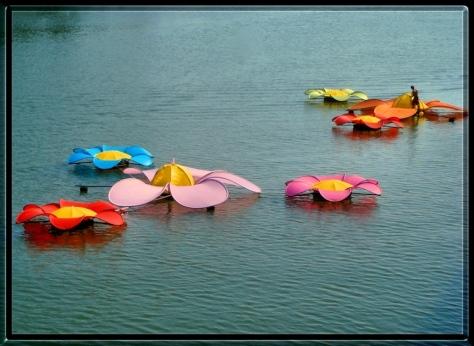 flowerswater