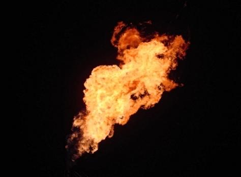 fiamme
