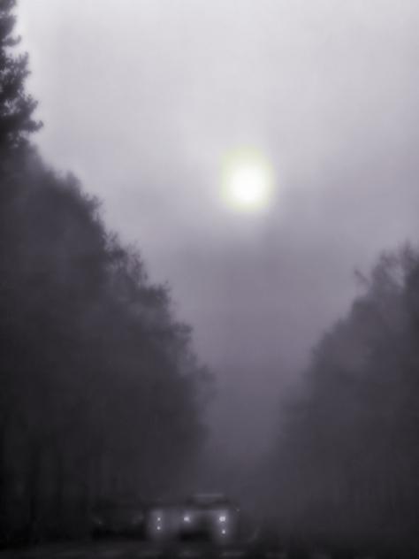 morning brume